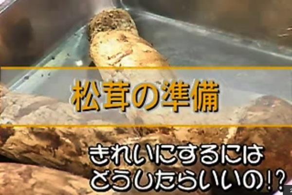 松茸の準備